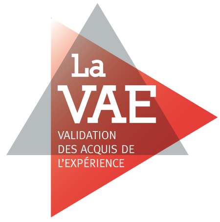 VAE_logo_light